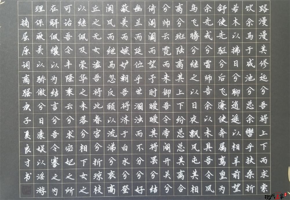 中国现代书法家——顾佳、范西章、吕德怀、董良才、王毅武、周兴柱、魏世全、郭连永、阳庆康、温汉荣-第11张