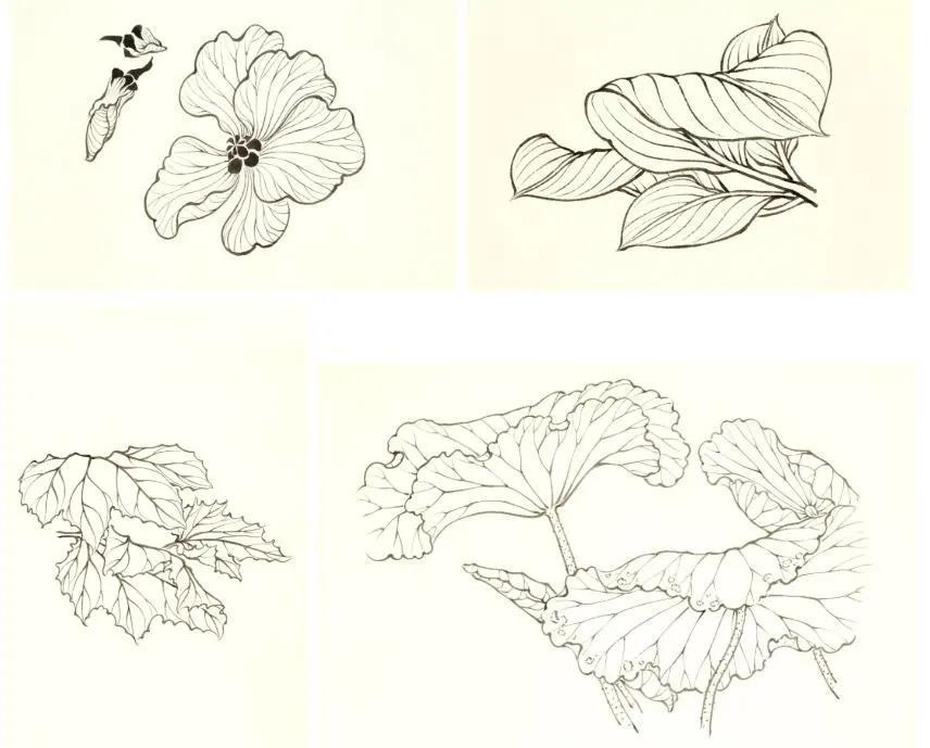 苏百钧:《芥子园传》与中国画的学习-第2张